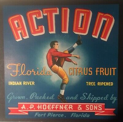 """ACTION an ORIGINAL OLD FLORIDA crate Label From FT PIERCE Florida 9x9"""""""
