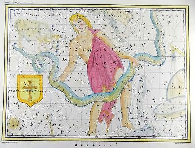 RARISSIMUM Large Celestial Map Ophiuchus from Atlas by Hoffmann 37 cm