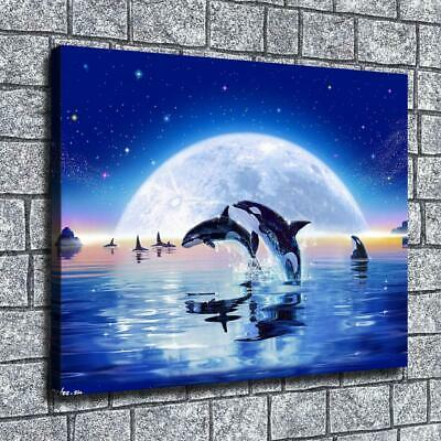 """16""""x22""""killer whales Paintings HD Print on Canvas Home Decor Wall Art Pictures"""