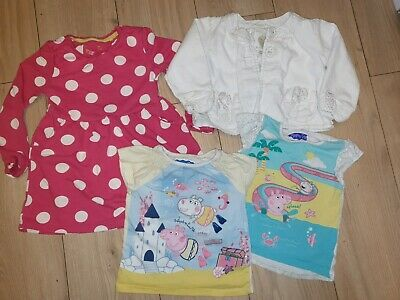 Small Bundle Of Girls 2-3 Years Clothes including peppa pig. Tu, next & nutmeg