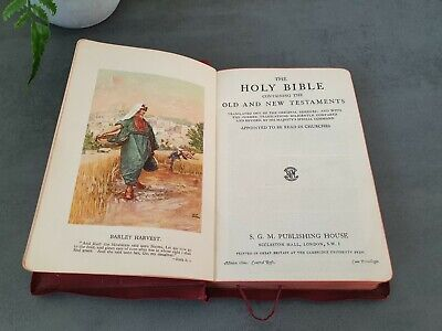 the holy bible illustrated red cover