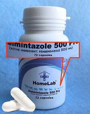 Helmintazole 500mg Fenbendazole Tablets Panacur Safe Guard 72 Capsules  페벤다졸
