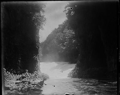 Antique 4x5 Glass Plate Negative Stream Flowing into a Lake in the Forest -V4429