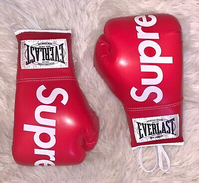 SUPREME EVERLAST BOXING Gloves Red *DS* Brand New RARE