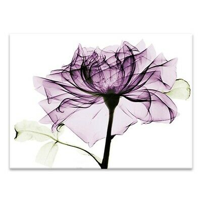 Purple Flower Art Canvas Painting Print Home Wall Decor Without 75*50cm Charm