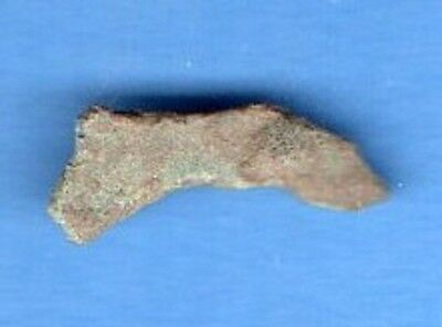Sarmatia OLBIA cast proto money DOLPHIN 5th Century BC Ukraine 339