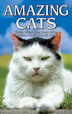 Amazing Cats : Stories of Intuition, Compassion, Mystery & Extraordinary Feat...