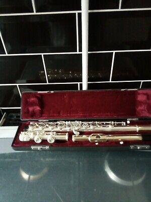 Flute with the case