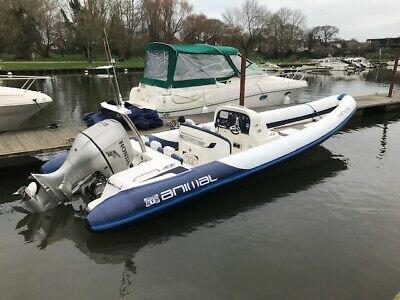 8M Animal Rib Boat Honda 225Hp Fourstroke