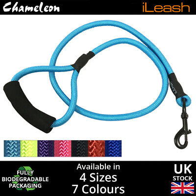 Strong Nylon Slip On Rope Dog Puppy Pet Lead Leash No Collar Needed top quality