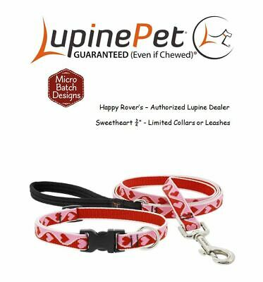 """Lupine Lifetime LIMITED Design Dog Collar or Leash Hearts - 3/4"""" - Sweetheart"""