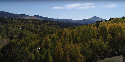 2.02 Acres Cripple Creek Colorado Trees Views Water And Electric