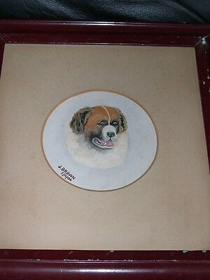 Large Antique St Saint Bernard Dog Oil Painting 1904 Original Frame Signed Head