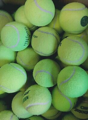 30 Used Tennis Balls For Dogs - Low Pressure - Great For Smaller Dogs / Puppies,