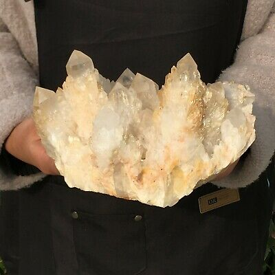 6.6LB Natural Clear White Quartz Crystal Cluster Point Healing Stone DQ176