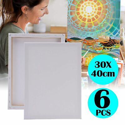 6 Pack 30 X 40Cm Blank Plain Stretched Painting Art Acrylic Canvas White