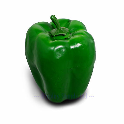 Green Bell Pepper Realistic Artificial Fake Vegetable Retail Display Prop (FF11)
