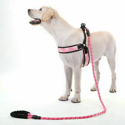 Pet Leash Rope Dog Chain Reflective Comfortable Handle Strong Dog Leash Pink