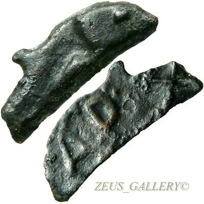 DOLPHIN Coin APIXO signed Skythia, Olbia Thrace Bronze 30mm Ancient Greek 437 BC