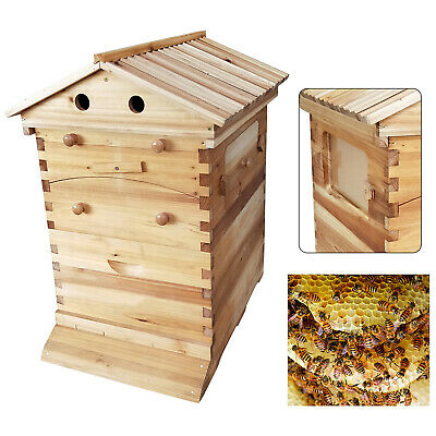 Beekeeping Wooden House Beehive Boxes-Max 7Pcs Auto Flow Beehive Frame Comb