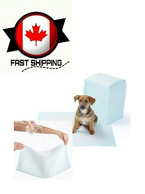 Regular Pet Dog and Puppy Training Pads - Pack of 100