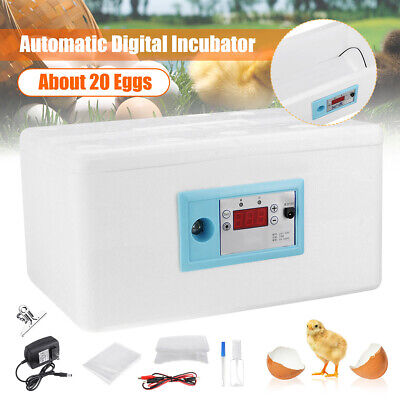 20 Egg Automatic Turning Digital Incubator Poultry Hatcher Temperature  5