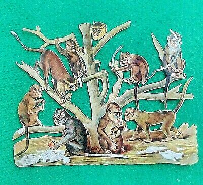 "Large Victorian die-cut scrap troop of baboons monkeys in tree  6 ¼"" x 5"" [160mm"