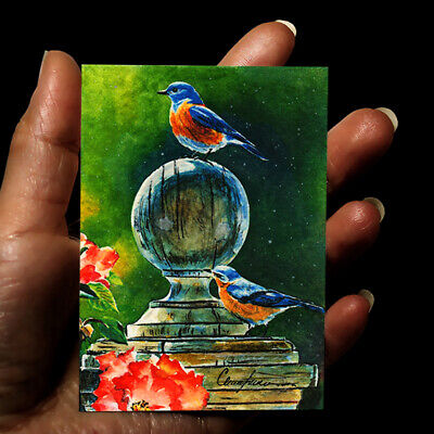 original miniature painting ACEO art picture animals watercolor drawing birds