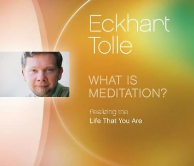 What is Meditation?: Realizing the Life That You Are by