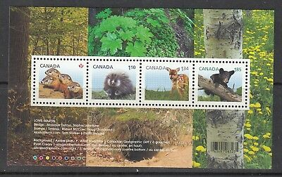 Vc913 Canada #2602 Baby Wildlife Ss       Buy 4 Or More Stamp Lots $3.00 S&H Max