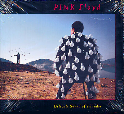 Pink Floyd Delicate Sound of Thunder 2016 Reissue CD NEW