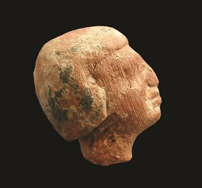 Ancient EGYPTIAN Head of a Wooden Male Servant Figure, MIDDLE KINGDOM, 2000 BC
