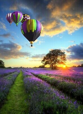 """Jigsaw Puzzle 500 Pieces Gold Edition """"Hot-Air Balloons"""" by Wuundentoy"""