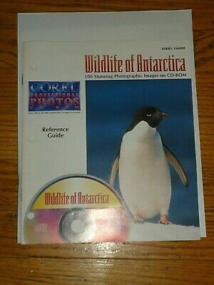 COREL Professional CD ROYALTY FREE Photos,Wildlife of Antarctica,100 Stunning