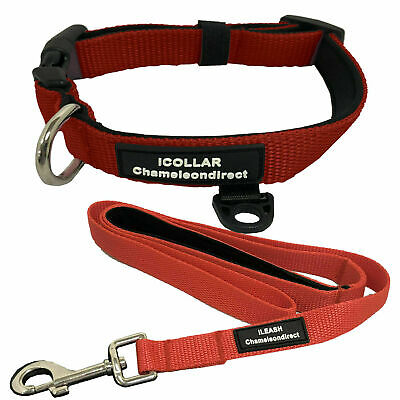 PREMIUM RED Neoprene Dog lead & Collar sets,  with 4 Sizes of collar