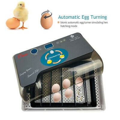 12 Digital Egg Incubator Temperature Control Automatic Turning/Chicken Hatcher