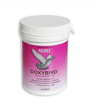 Pigeon Product - DoxyBird - respiratory tract - Ornithosis - by Medpet