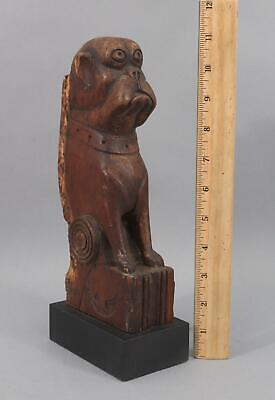 Antique 19thC Folk Art Carved Wood Bull Dog Bulldog Boxer Architectural Fragment