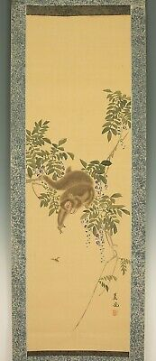 "掛軸1967 JAPANESE HANGING SCROLL ""Monkey on Tree""  @f369"