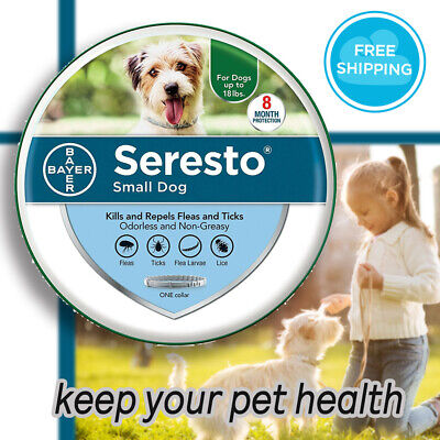 Bayer Seresto Flea and Tick Collar for Small Dog 8 Month Protection Fast Ship