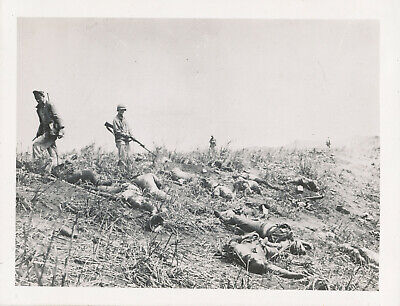 WWII 1940s GI's  South Pacific Photo GI's at a dozen Japanese Soldiers KIA