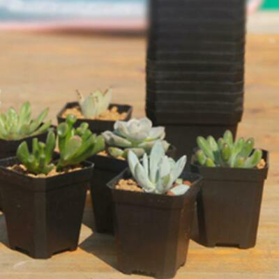 10X Plastic Square Rectangular Venetian Plant Flower Pot Pots Planter Container