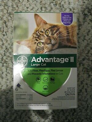 Bayer Advantage II for Large Cats over 9 Lbs - 6 Pack -  FLEA TREATMENT CONTROL