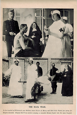 1914 Willebroeck World War I Red Cross Belgian Nurses, Belgium Sisters of Mercy
