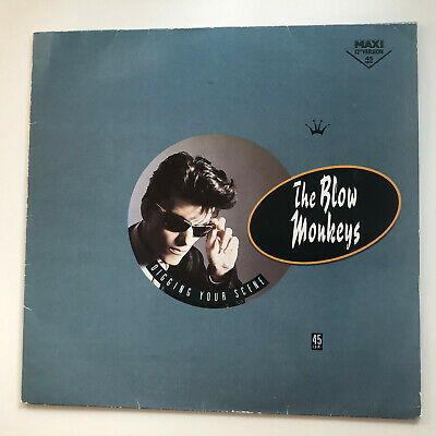"Vinyl THE BLOW MONKEYS ""Digging Your Scene"" 12"""