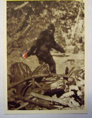 Postcard Featuring BIGFOOT CARING A CAN OF SPAM  (SPAM MUSEUM)  See pic*