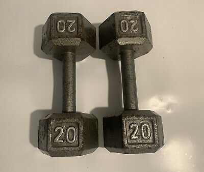 Set of 20 Lb Pound Cast Iron Hex Dumbbells 1 Pair Weights 40 pounds total