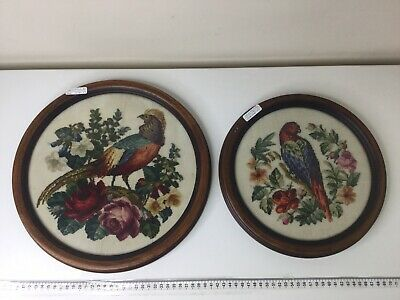 Vintage Tapestry Birds Of Paradise In Round Frames