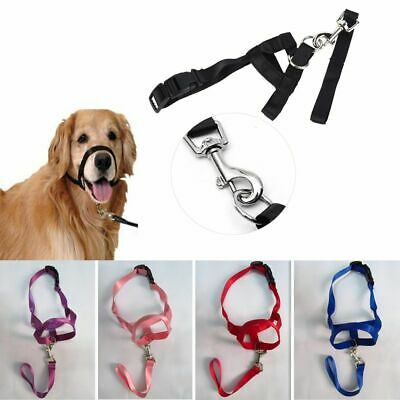 Train Puppy Head Collar Halter Pet Mouth Traction Set Dog Muzzle Strap