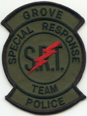 2 S.R.T Collar//Lapel pins Gold 1//2 Police//Sheriff Special Response Team use